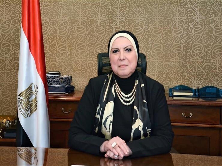 قرار بإعادة تشكيل الجانب المصري في مجلس الأعمال المصري النيجيري
