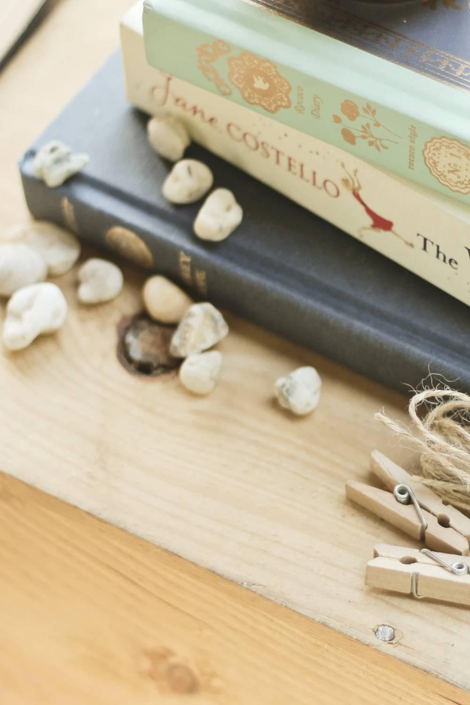 ambiente de leitura carlos romero cronica sonia zaghetto reflexoes vida morte pedras sonhos colecao livros