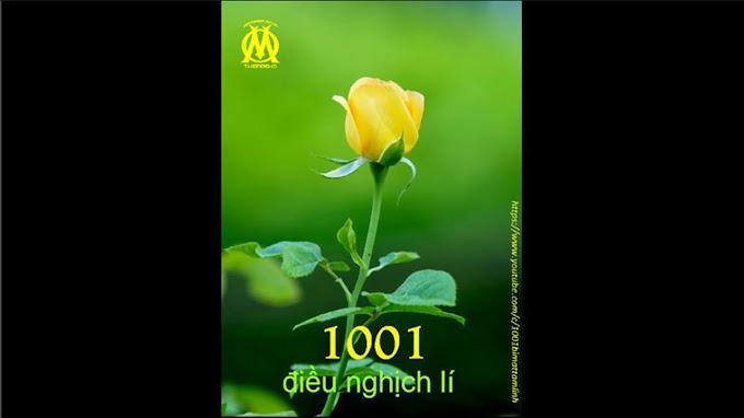 1001 Điều Nghịch Lí (0003)  Thụ động và tỉnh táo tạo nên người thiền, vị phật
