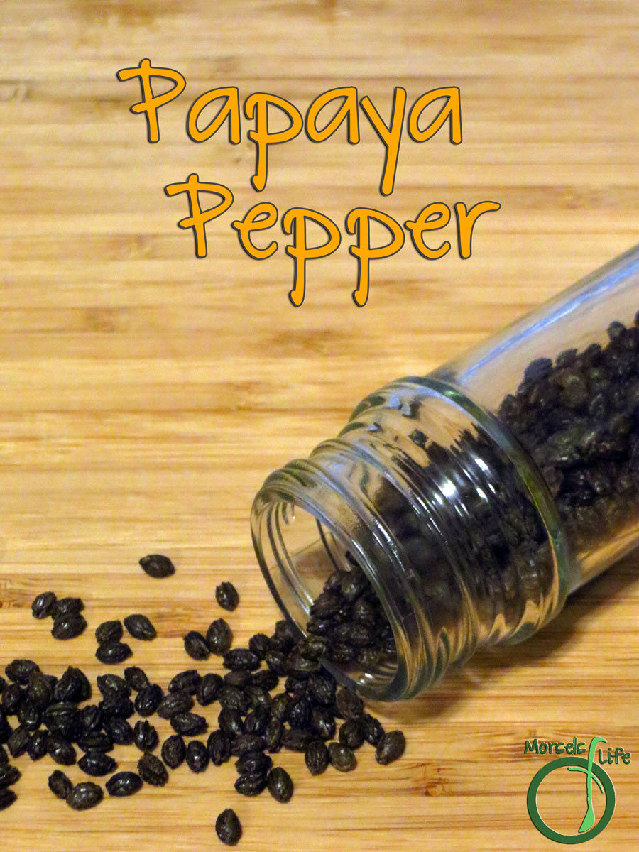 Morsels of Life - Papaya Pepper - Not sure what to do with papaya seeds and usually just throw them away? Why not make some papaya pepper instead?