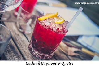 241+ Cocktail Captions For Instagram [ 2021 ] Also Cocktail Picture