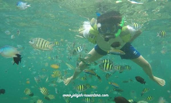 rencana perjalanan private wisata pulau pari