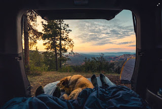 Camping in a van with a view of nature