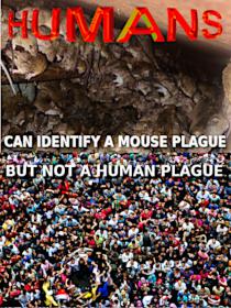 Plague humans