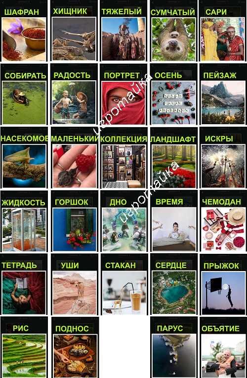 669 слов красный чемодан 4 уровень