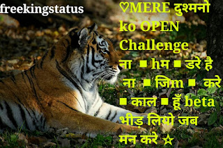 new attitude status in hindi,best attitude status in hindi