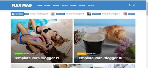 Flex Mag Blogger Template