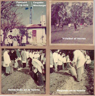 Escuela Granja trabajos en la huerta