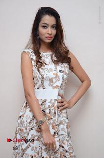 Telugu Actress Reshmi Thakur in Long Dress at Plus One ( 1) Audio Launch  0059.jpg