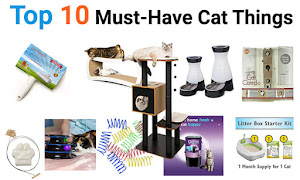 Top 10 essential products for cats in 2019