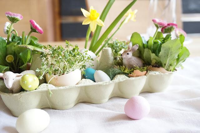 Ostern im Eierkarton