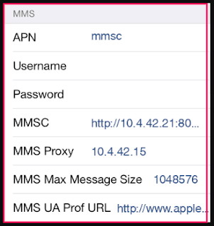 Idea APN Settings for iPhone