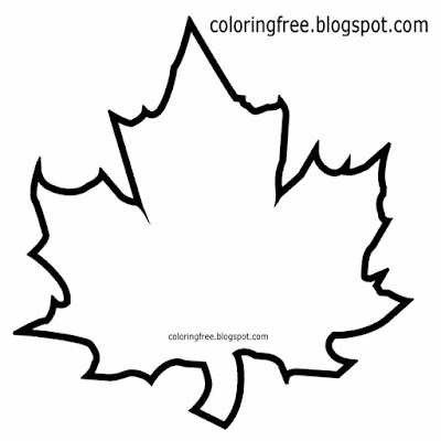 Simple tree Canadian coloring book picture maple leaf outline wildlife illustration with terminology
