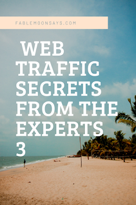 Web traffic secrets from experts 3