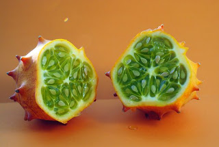 melon-tanduk,www.healthnote25.com
