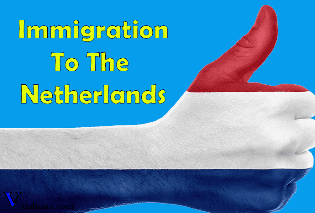 Immigration to the netherlands , immigration and naturalization service netherlands