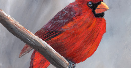 Northern Cardinal in acrylics