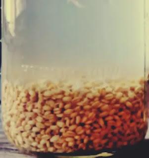 bors rejuvelac pareri forum probiotice naturale