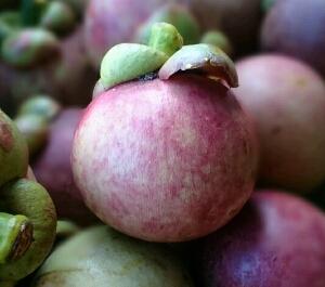 manfaat kulit manggis untuk kesehatan
