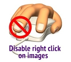 Disable Right Click dan Copy
