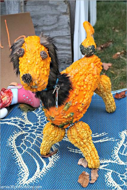 Perro en el Return of the Pumpkin People de Jackson en New Hampshire