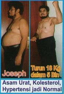 Harga Herbalife Healthy Meal