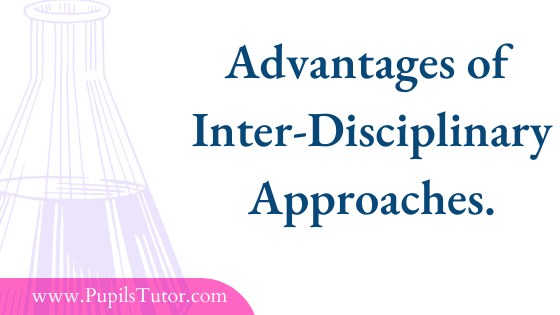 Advantages Of Inter-Disciplinary Approach In Science   Importance Of Interdisciplinary Approach In Education   Why Is Interdisciplinary Approach Important? - www.PupilsTutor.com