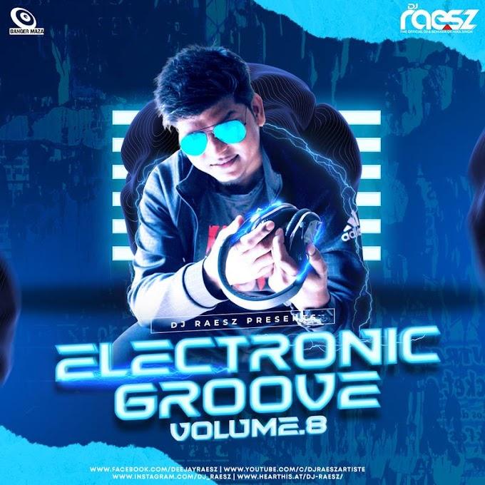 Electronic Groove Vol.8 - DJ Raesz