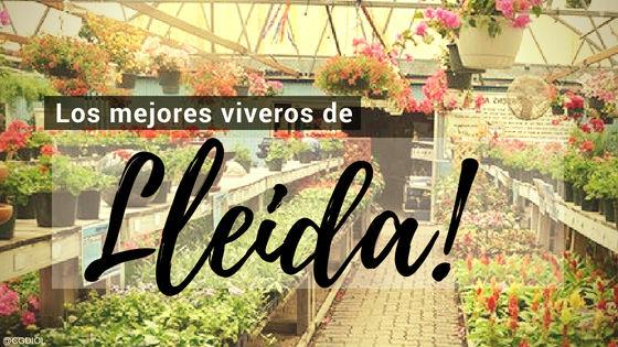 Listado de los Mejores Viveros de la Provincia de Lleida, España, donde puedes comprar plantas para tus proyectos