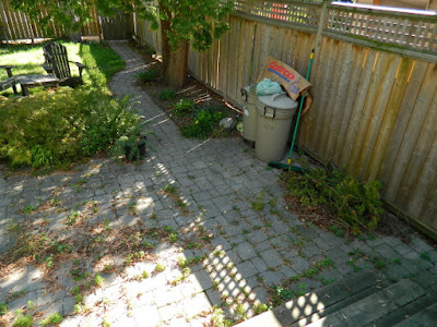 Toronto gardening services Bracondale Hill back yard cleanup before by Paul Jung