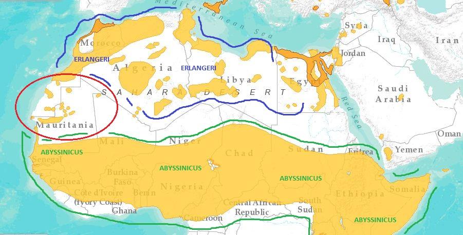 Carte Afrique Jaune Grise Verte.Ornithondar Des Oiseaux A Saint Louis Et Dans Le Nord Du