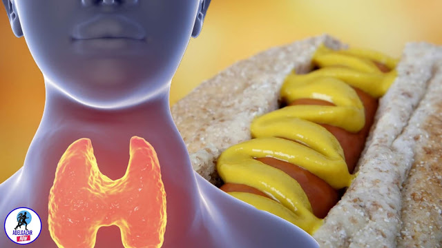 Alimentos que Debes Comer Para que tu Tiroides Funcione Mejor - Dieta para el Hipotiroidismo