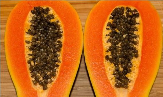 Selain dikenal sebagai buah yang baik untuk melancarkan pencernaan Khasiat Biji Pepaya Untuk Kesehatan
