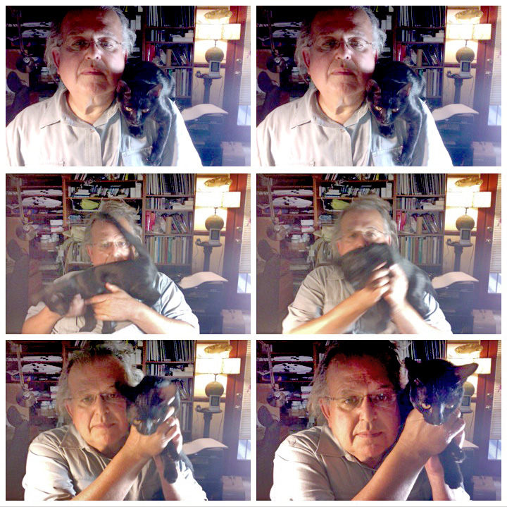 David Ocker's set of six selfies with Doctor Pyewacket who was otherwise occupied