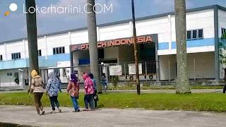 Loker Mei 2020 - Lowongan kerja PT CCH Indonesia Terbaru 2020