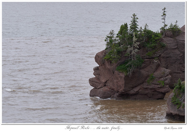 Hopewell Rocks: ... the water, finally...