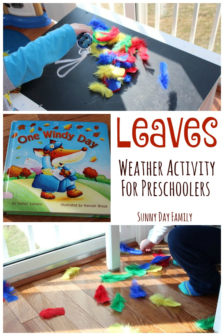 Preschoolers will be blown away by this fun book based weather activity! Learn about leaves and wind with this interactive book extension