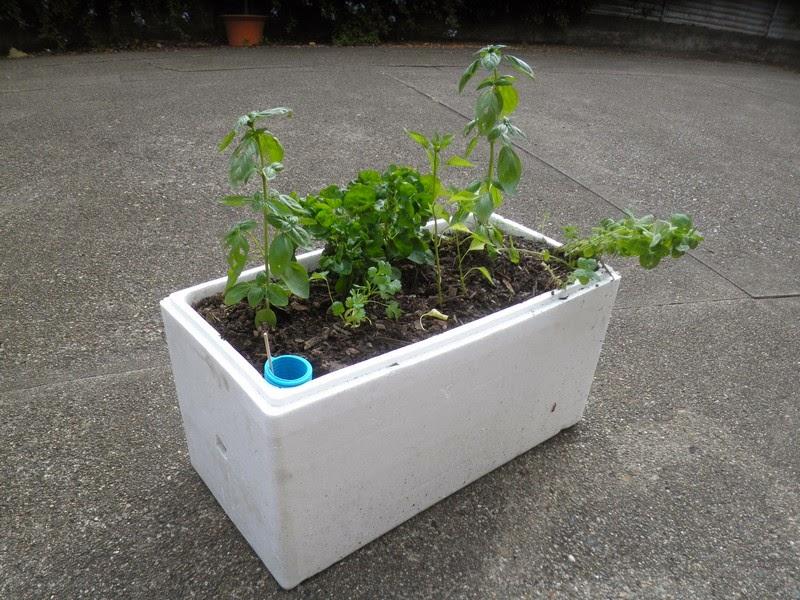 Spurtopia S Invention Self Watering Planter Box