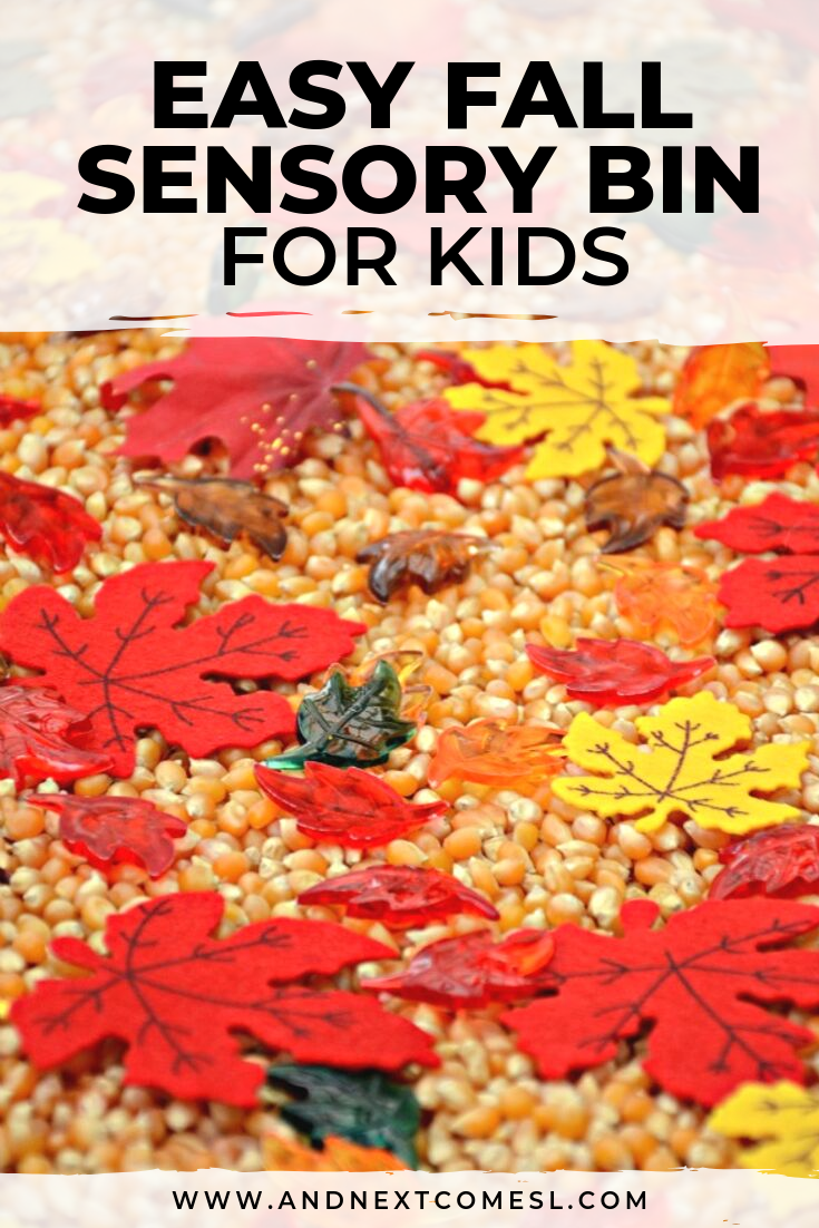 Fall sensory bin for toddlers and preschoolers filled with corn and leaves