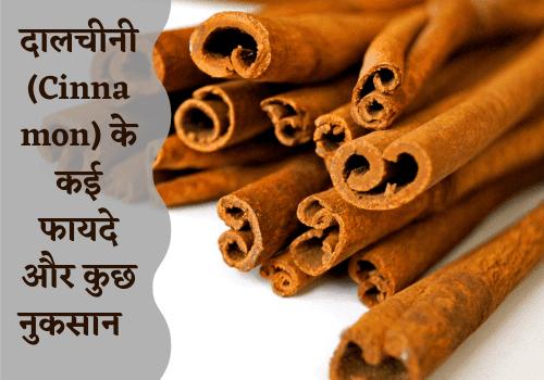 दालचीनी (Cinnamon) के कई फायदे और कुछ नुकसान