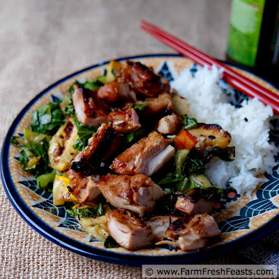 http://www.farmfreshfeasts.com/2015/07/grilled-korean-chicken-thighs-with.html