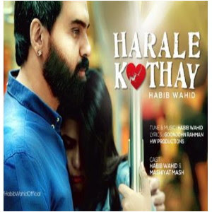Harale Kothay (হারালে কোথায়) Habib Wahid | New Song lyrics 2020