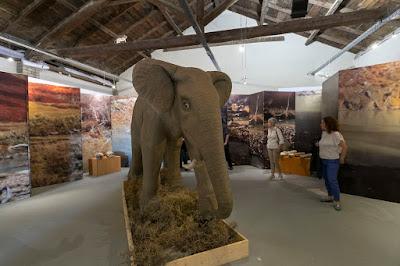Άνοιξε επισήμως το Αριστοτέλειο Μουσείο Φυσικής Ιστορίας της Θεσσαλονίκης
