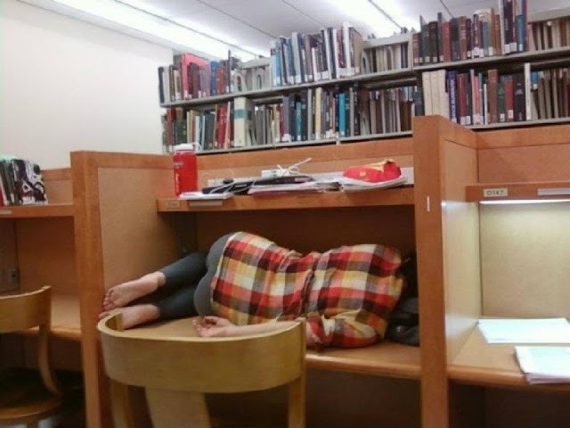 Finals in the library. Sleeping girl curled up in a study desk cubby. Pushup Bras and Academics. marchmatron.com