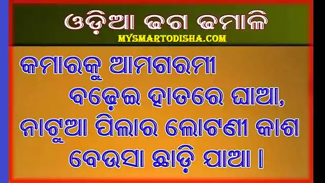 Odia Dhaga Dhamali Question Answer