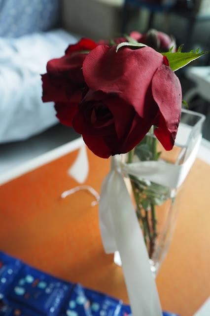 roses singapore 2017 valentine's day