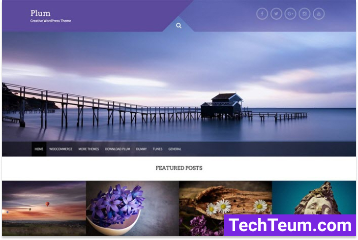Plum lovely Free Multipurpose Theme