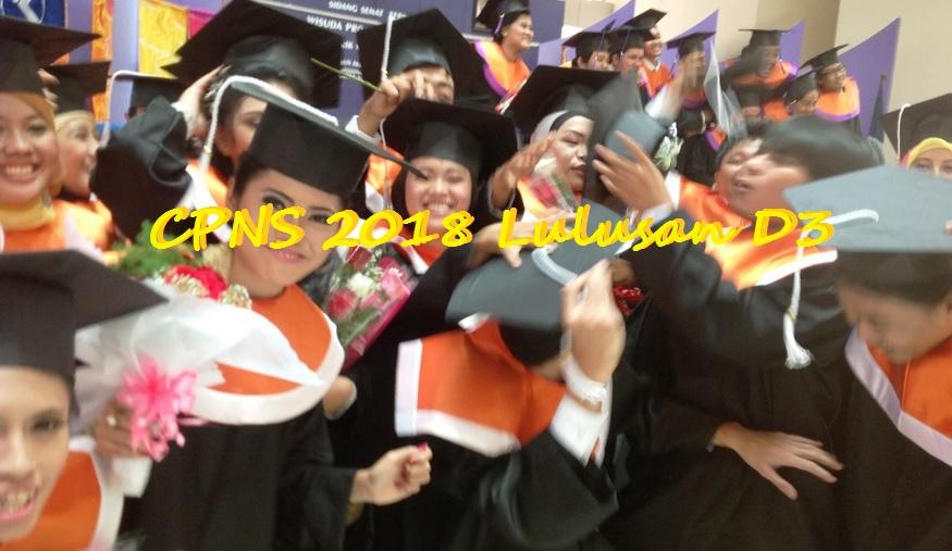 CPNS 2018 lulusan d3