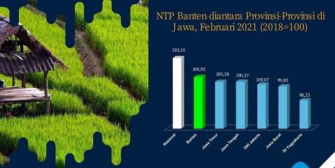 Awal 2021, Nilai Tukar Petani Banten Tertinggi se-Pulau Jawa