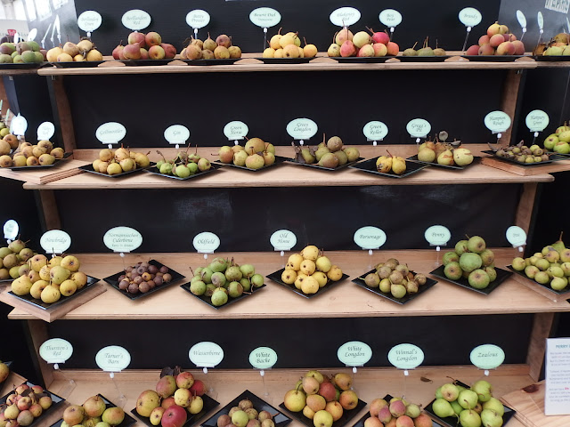 A selection from the 90 perry pear varieties bought to the show from the national collection